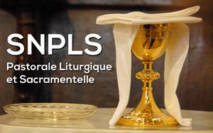 Logo_SNPLS_EC_mini
