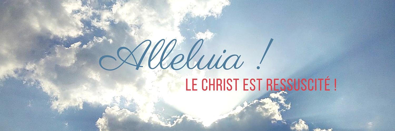 Header twitter Alleluia !