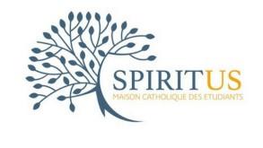 titre spiritus