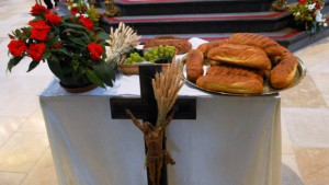 blé eucharistique -ymage134-fe241